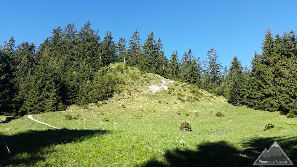 Clearing before reaching the Ochsensitz